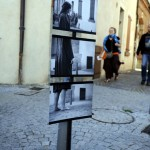 Reportage photo - Festival les Insolites Albi - NCNC production