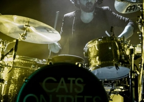 Concert Cats on Trees – Toulouse 2015