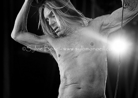 Concert Iggy and the Stooges – Festival Garorock 2013